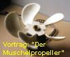 MuschProp